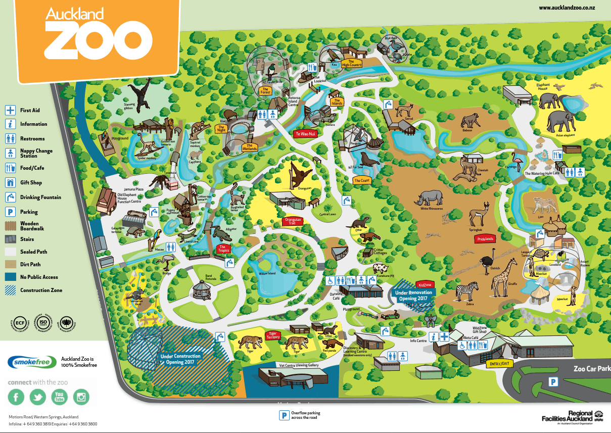 awe inspiring auckland zoo